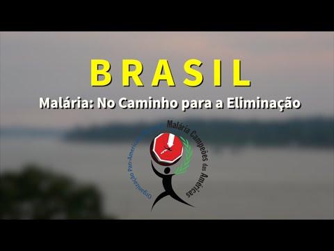 Iniciativas do Brasil, Paraguai e Suriname recebem prêmio da ONU sobre combate à malária