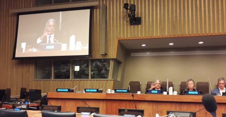 Fiocruz participa de Fórum da ONU de CT&I para Agenda 2030