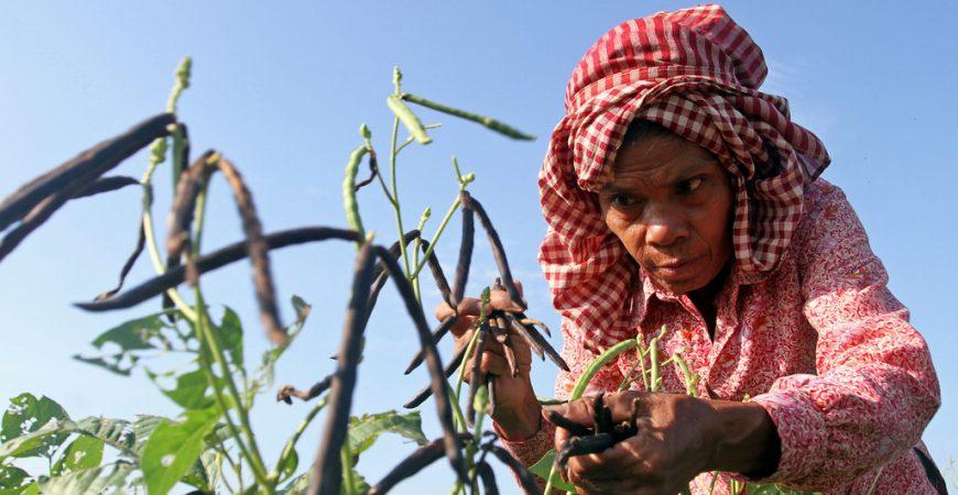 ONU reduz previsão de crescimento econômico em meio a tensões comerciais e incertezas políticas