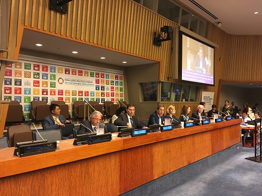 Fiocruz atua em Fórum da ONU de desenvolvimento sustentável