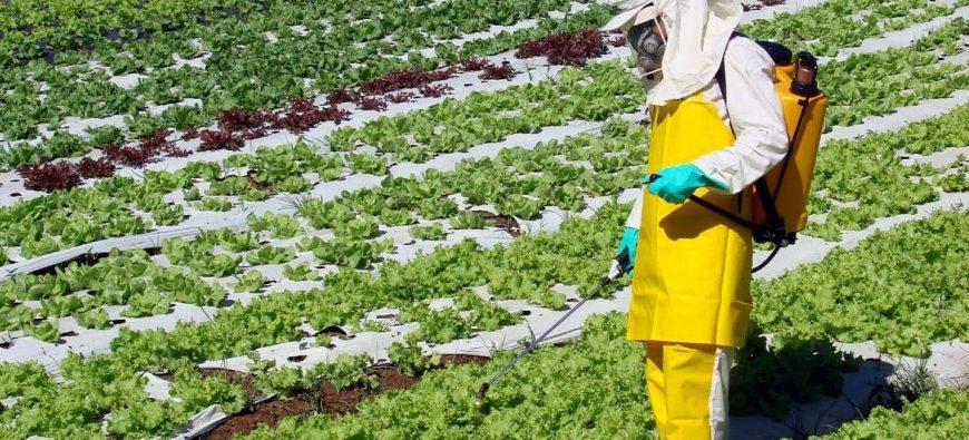 ISENÇÕES E REDUÇÕES FISCAIS NA COMERCIALIZAÇÃO, INDUSTRIALIZAÇÃO E USO DE AGROTÓXICOS NO BRASIL