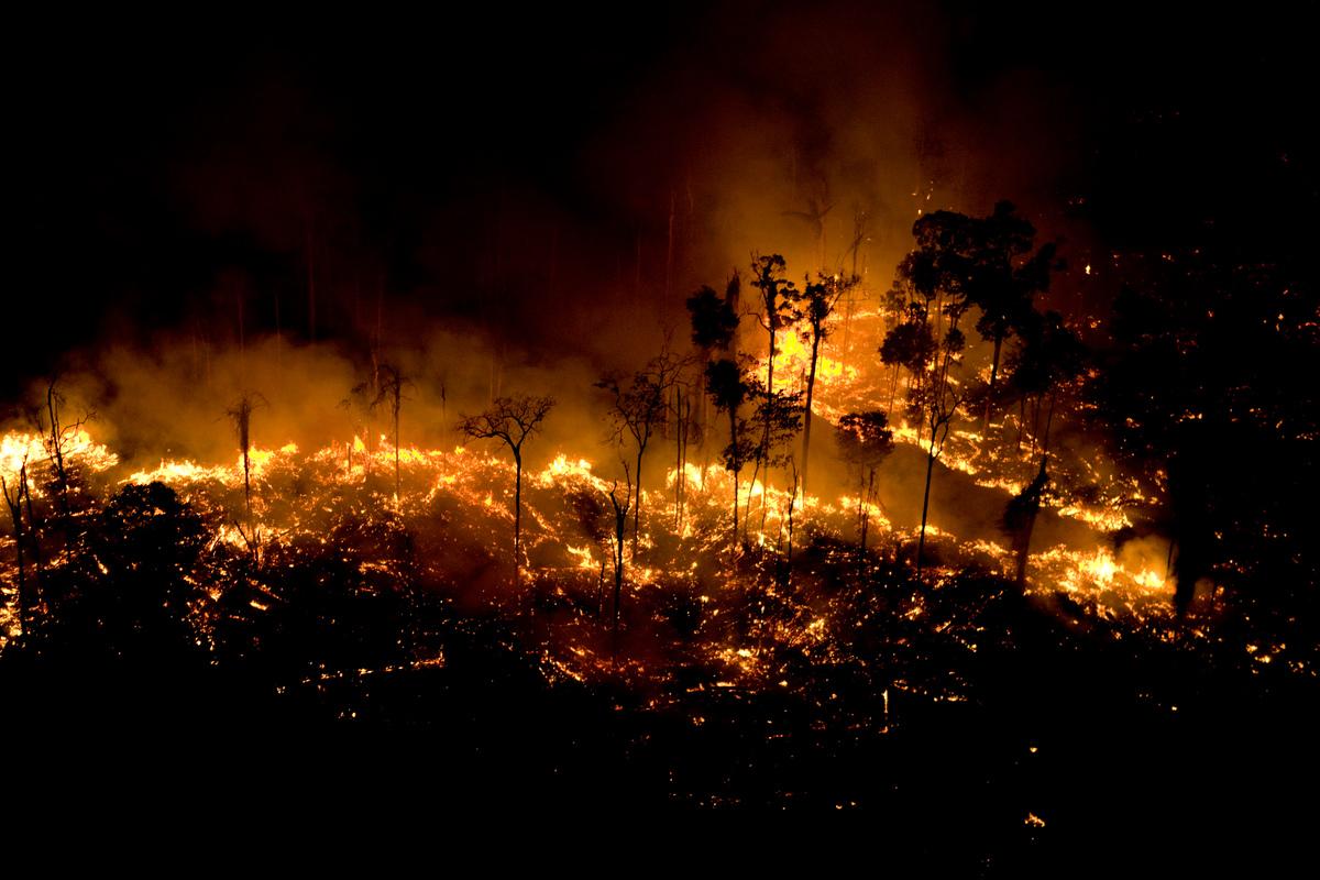 Queimadas na Amazônia causam forte impacto no SUS