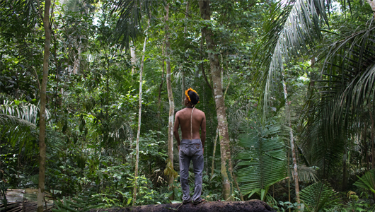Covid-19: Fiocruz elabora ações para os povos indígenas